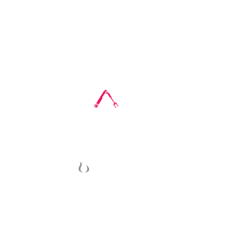 Dynamical Systems Cup