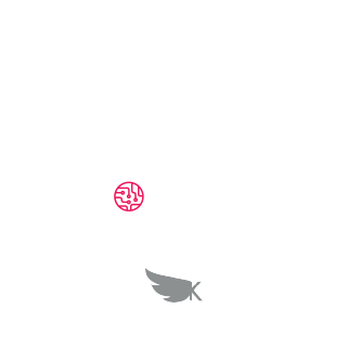 Kasa Digital Solution  Cup